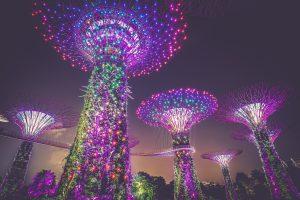 Legalizzazione consolare per Singapore